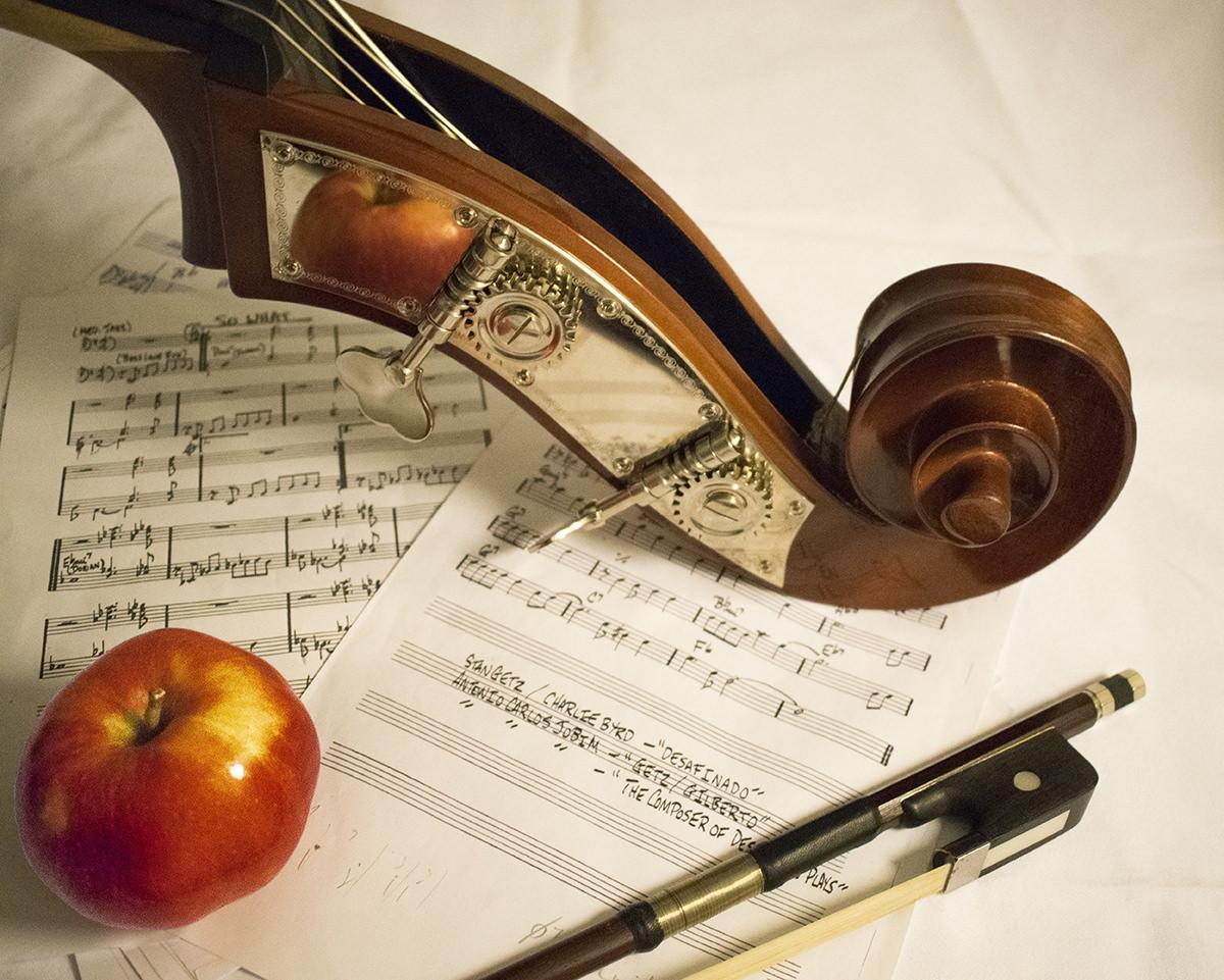 Violin Lessons Music Maestros