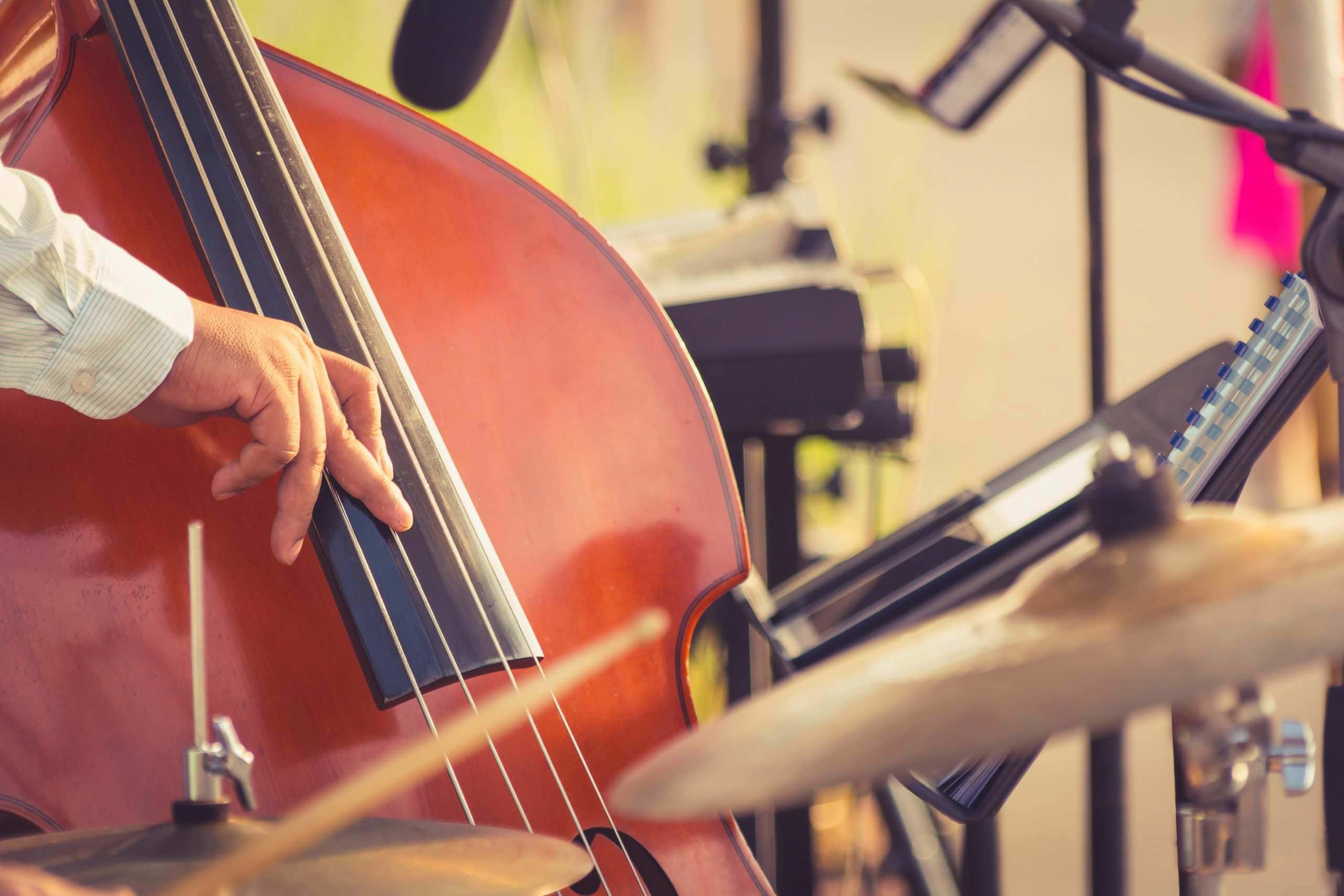 Double Bass Lessons Southampton Hampshire