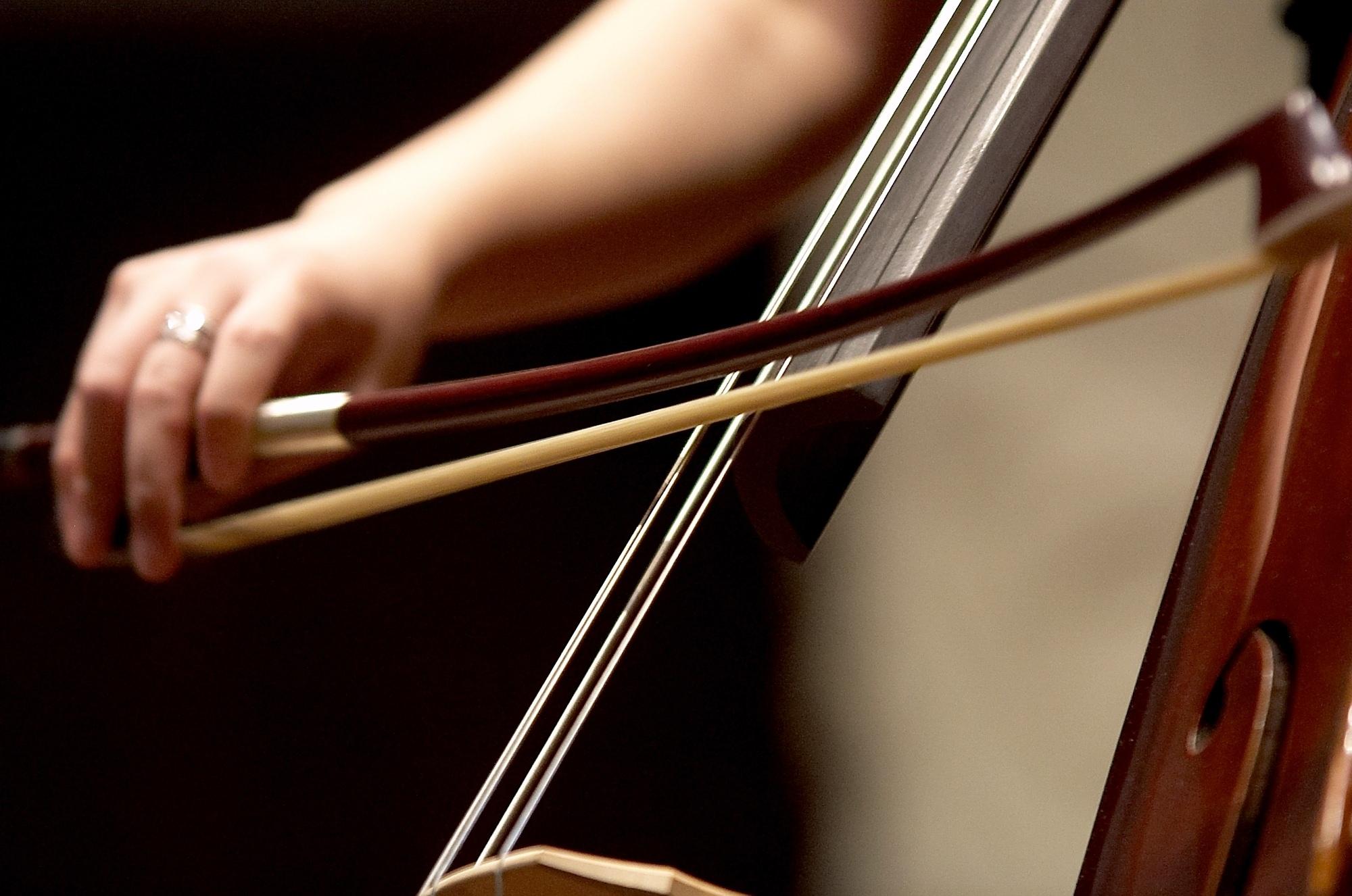Double Bass Lessons Southampton