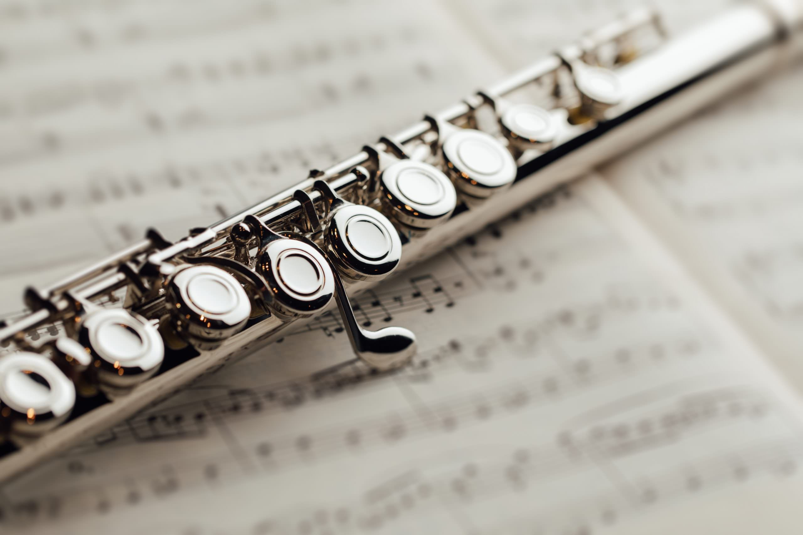Flute Lessons Southampton