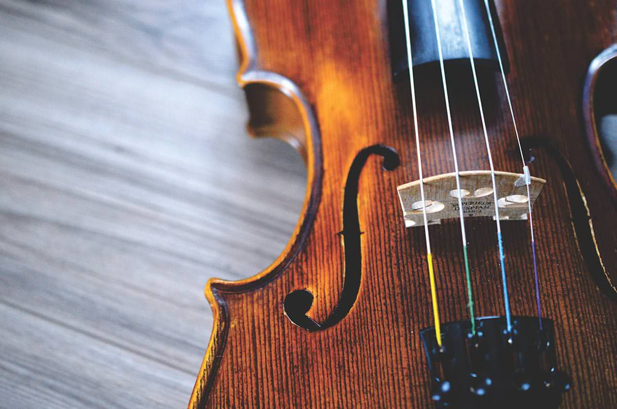 online violin lessons prices